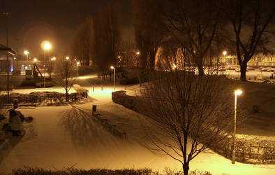 Snow Lights by treebor