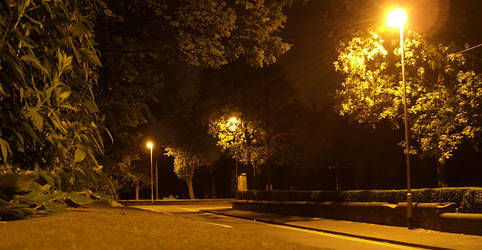 Street light's by treebor