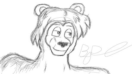 The Bear's got the looks :3 by Bronson365