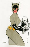 Catwoman by DisintegrationStreet