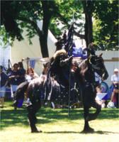 Stock - Greenwood Faire 3 by Murasaki99