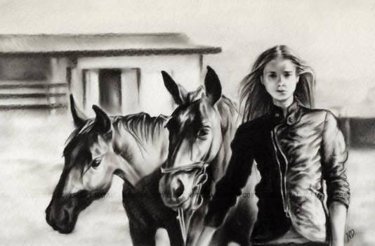 Horse Farm.. by Acacia13
