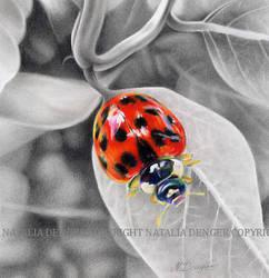 Sweet lady by Acacia13
