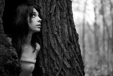 In the tree by Sartr