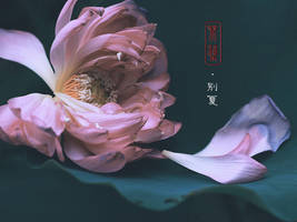 Lotus - For saying Goodbye to the Summer by CE-Ciel