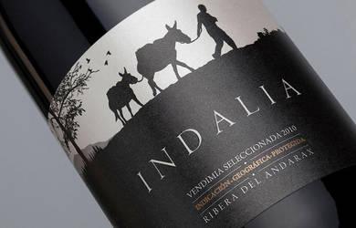 INDALIA by JohnAppleMan