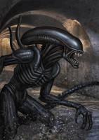 Alien speedy paint by adam-brown