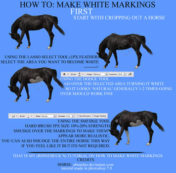 HOW TO: make white markings by rhinebeck