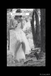 wonderland by stalkerfish