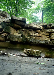 Abandoned Nature 5 by danidejar