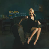 Shakira - Underneath Your Clothes by antoniomr