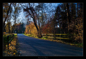 Autumn Light by AndreasResch
