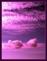violet by SailorOfTheSky