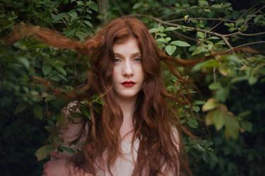 Amelia by Saunter