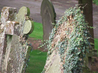 Graves by echosheart
