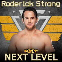 CFO$ - Next Level (Roderick Strong) by BassAdams