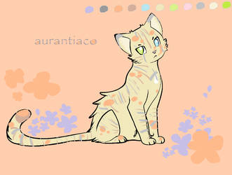 Aurantiaco Orange Cat by Winged-Keldeo