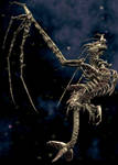 Spore - Skull Wyvern by Rebecca1208