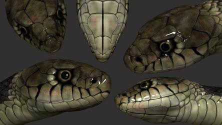 ZBrush - Garden Snake by Rebecca1208