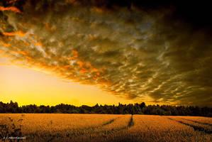 Sunset 16 by orlibraorli