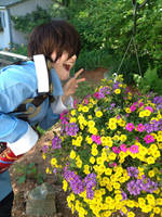 Seto Likes Flowers by Aorean