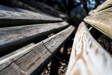 Bench by ThatAudGirl