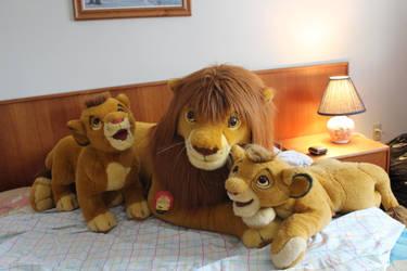 All my Douglas Simba by Laurel-Lion