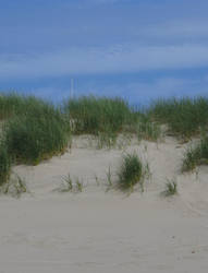 Sandy beach background by thiselectricheart