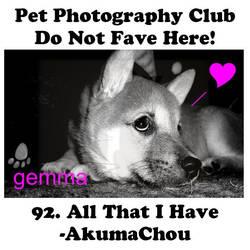 AkumaChou.01 by Pet-Photography