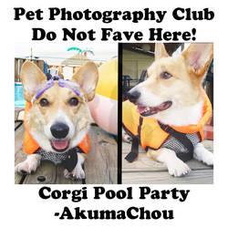 AkumaChou.03 by Pet-Photography