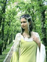 Arwens Coronation Crown by Farothiel
