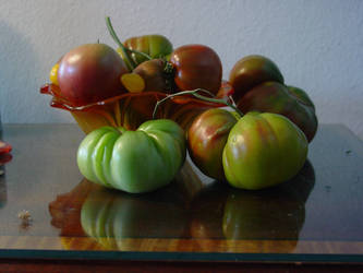 Heritage Tomatos 014 by Sid-stock