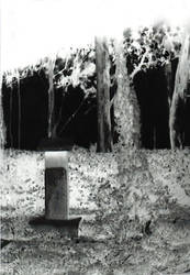 Memorial by caiphana