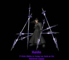 Xaldin Motivitional Poster by Akasam360