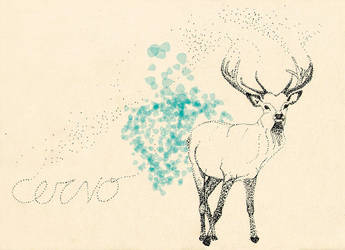 1-cervo colour-L by sapfonelo