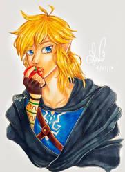 Link by shinjiiru