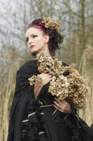 Stock - Gothic rotten flowers  6 by S-T-A-R-gazer