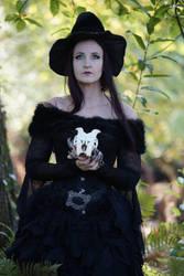 Stock - Halloween special witch portrait Skull by S-T-A-R-gazer