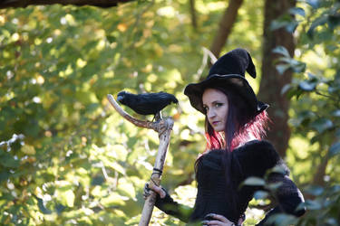 Stock - Halloween special witch .. purple hair by S-T-A-R-gazer