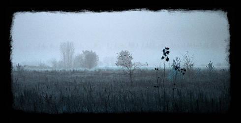 Autumn is leaving... by Socratim