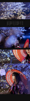 sakura at night by 35ryo