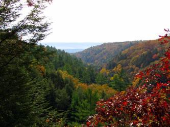 Autumn Overlook by RealityIntolerant