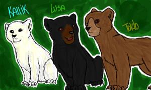 Seekers bears by Zoketi