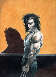 Wolverine 181 after Ribic by Sniktchick