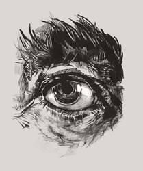 Hairy Eyeball by greyfin