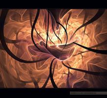 placenta by greyfin