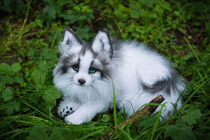 Sold! Handmade Poseable toy Arctic Marble Fox by MalinaToys