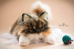 Handmade Poseable toy Commission fluffy cat by MalinaToys