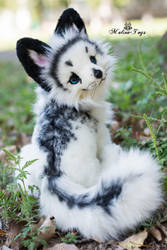 Arctic marble fox by MalinaToys