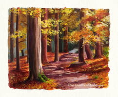 Autumn Scene by thehamofficial